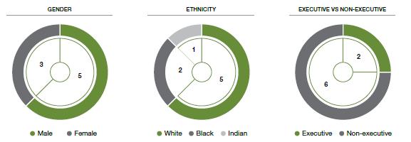 Gender, Ethnicity and Executive vs Non-Executive Stats